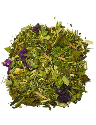 the vert detox sencha citron